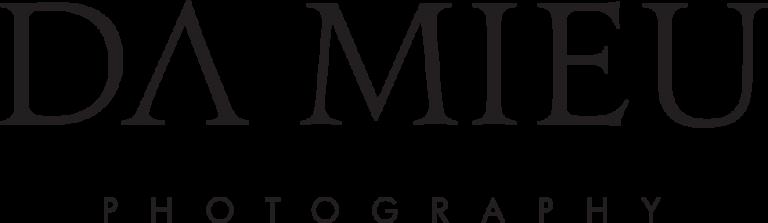 DAMIEU-logo-black-768x223